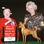 Always a beautiful girl, CH. Cheristar's Emmy Award is my 2nd generation. She has produced 8 AKC Champions to date.